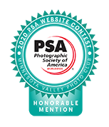 Honorable Mention - 2020 PSA Photography Contest